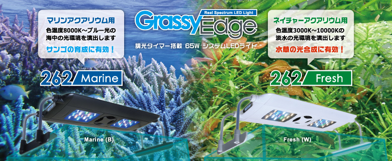 grassy-edge